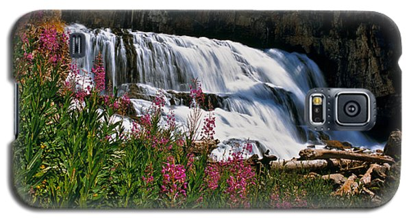 Fireweed Blooms Along The Banks Of Granite Creek Wyoming Galaxy S5 Case