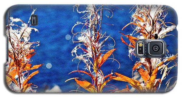 Fireweed Flower Galaxy S5 Case