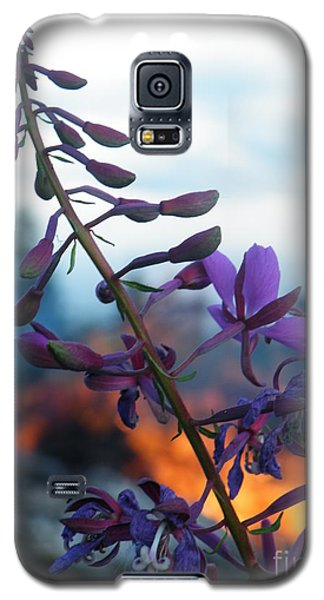 Fireweed Number Five Galaxy S5 Case by Brian Boyle