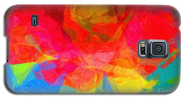 Firewheel - Gaillardia Pulchella Galaxy S5 Case