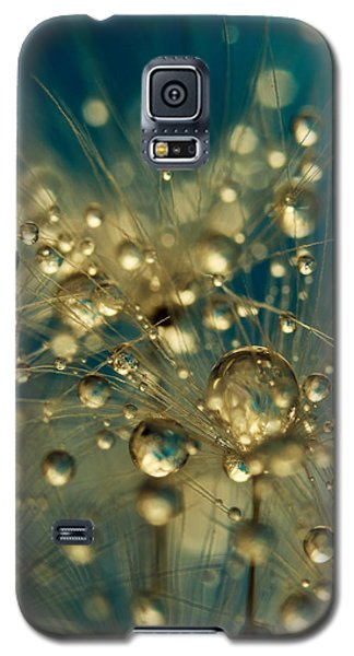 Firework Dandy In Blue Galaxy S5 Case