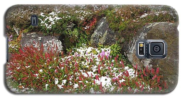 First Autumn Snow Galaxy S5 Case by Barbara McDevitt