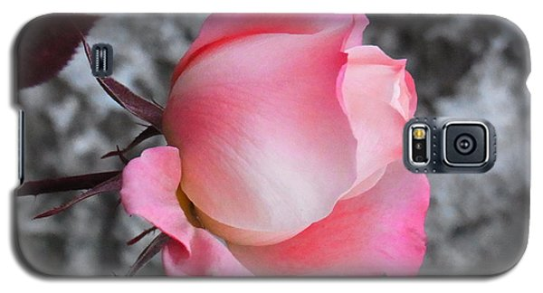 Galaxy S5 Case featuring the photograph First Blush by Agnieszka Ledwon