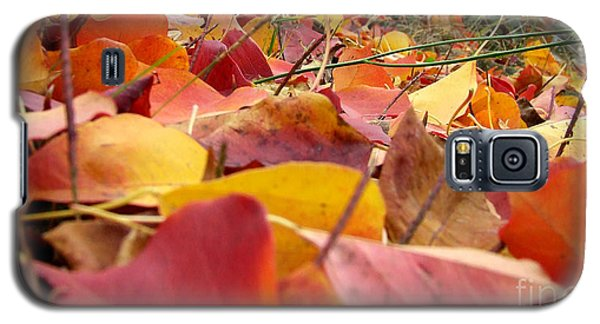 Galaxy S5 Case featuring the photograph First Day Of Fall by Andrea Anderegg