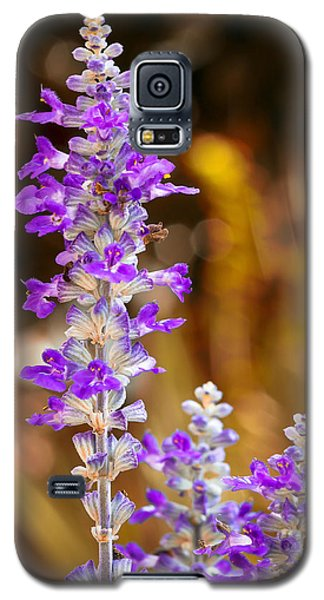 First Day Of Fall Galaxy S5 Case