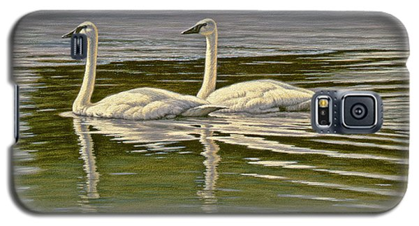 Swan Galaxy S5 Case - First Open Water - Trumpeters by Paul Krapf