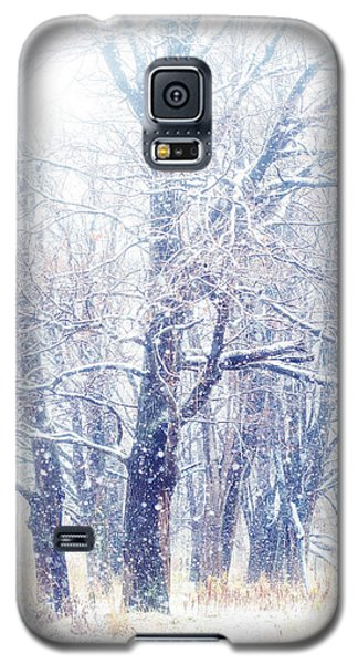 First Snow. Dreamy Wonderland Galaxy S5 Case by Jenny Rainbow