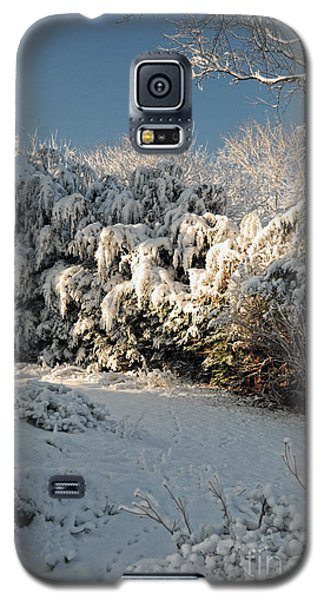 Galaxy S5 Case featuring the photograph First Snow Fall by Nigel Fletcher-Jones