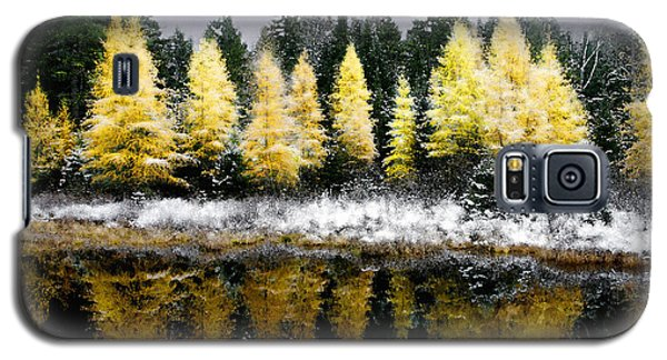 Tamarack Under A Painted Sky Galaxy S5 Case