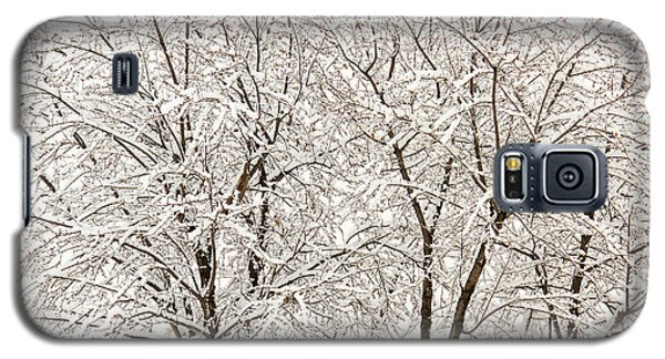 Galaxy S5 Case featuring the photograph First Snow by Timothy McIntyre