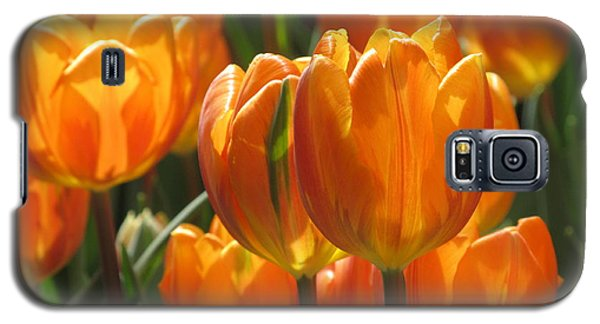 First Tulip Of Spring Galaxy S5 Case