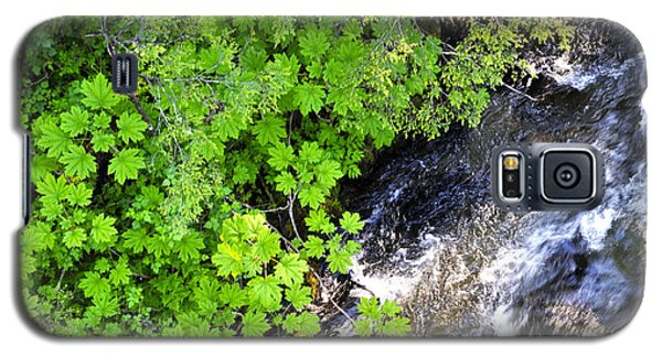Fish Creek In Summer Galaxy S5 Case