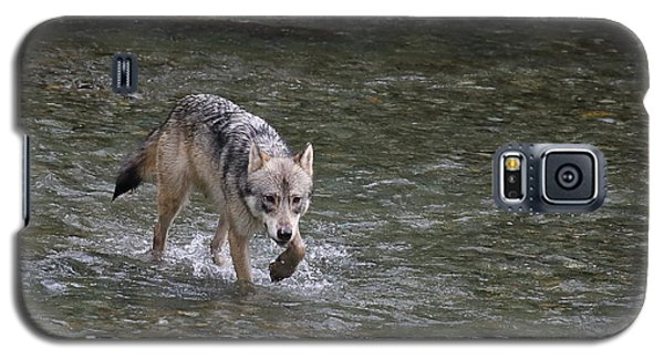 Fish Creek Wolf Galaxy S5 Case