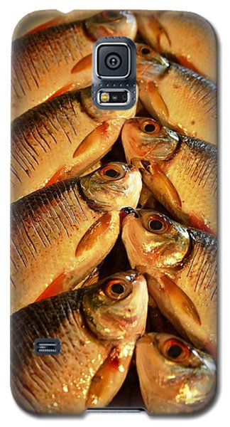 Galaxy S5 Case featuring the photograph Fish For Sale by Henry Kowalski