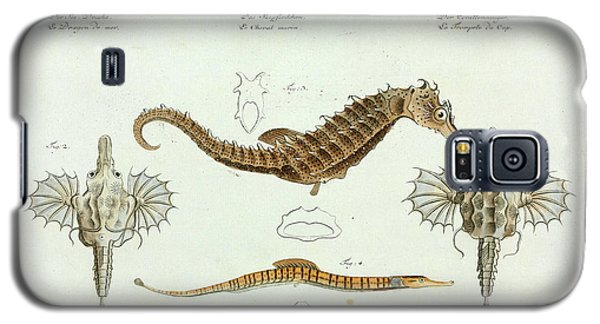 Fish Galaxy S5 Case by Natural History Museum, London