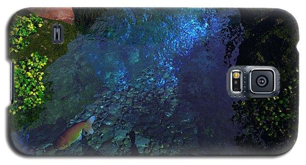 Fish Pond Galaxy S5 Case by John Pangia