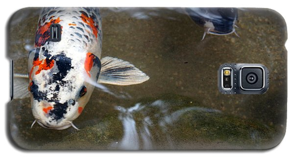 Galaxy S5 Case featuring the photograph Fish Scales by Cassandra Buckley