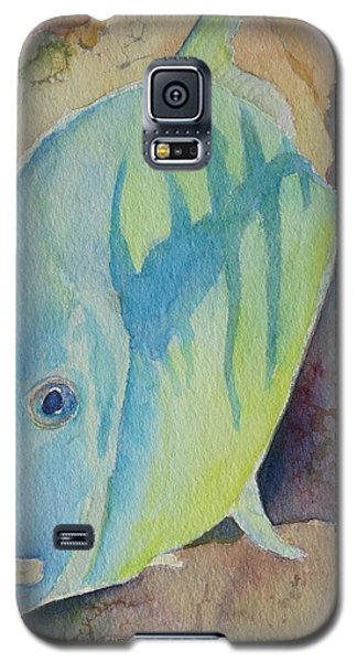 Fish Wish Galaxy S5 Case by Judy Mercer