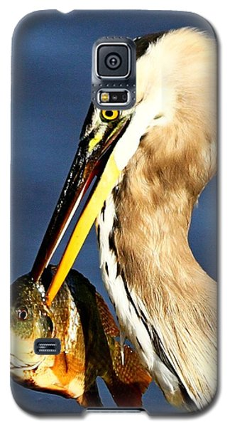 Fishing In Florida Galaxy S5 Case