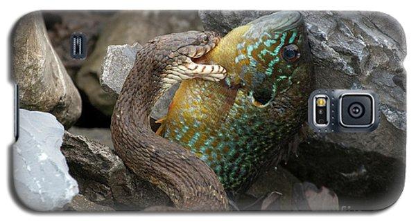 Fishing Galaxy S5 Case by Jeannette Hunt