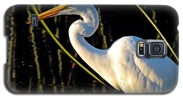Galaxy S5 Case featuring the photograph Fishing Trip by Duncan Selby