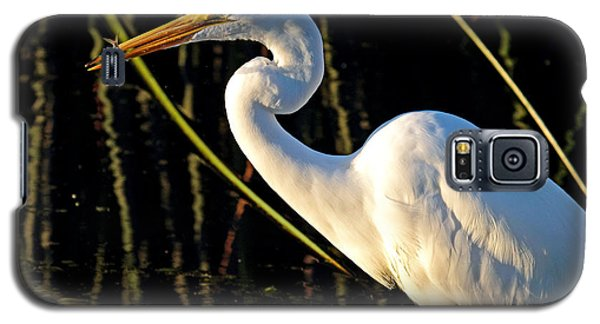 Fishing Trip Galaxy S5 Case by Duncan Selby