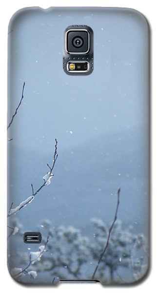 Galaxy S5 Case featuring the photograph Flakes by Brian Boyle