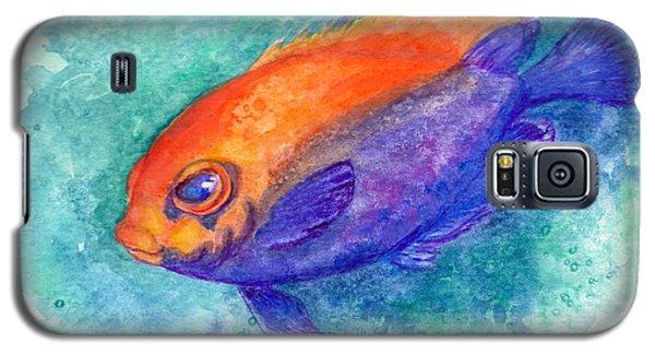Flameback Angelfish Galaxy S5 Case
