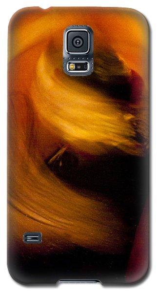 Flamenco Series 16 Galaxy S5 Case