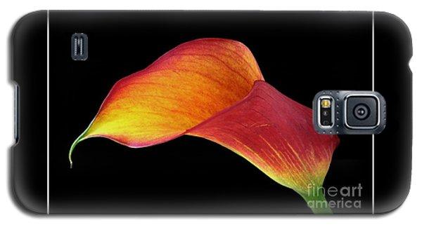 Flaming Calla Galaxy S5 Case by Chris Anderson