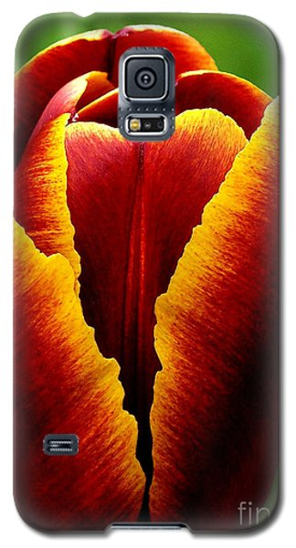 Flaming Heart Tulip Galaxy S5 Case