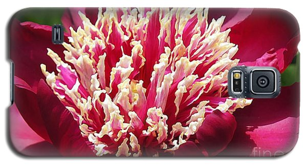 Flaming Peony Galaxy S5 Case