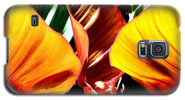 Galaxy S5 Case featuring the photograph Flaming Plant by Kristine Merc
