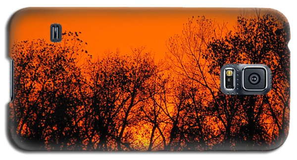 Flaming Sunset II Galaxy S5 Case