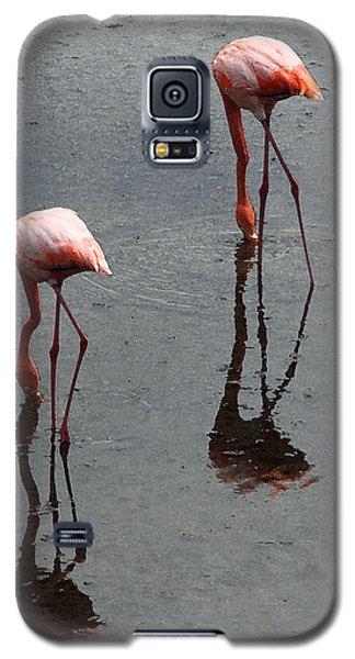 Flamingo Ballet Galaxy S5 Case