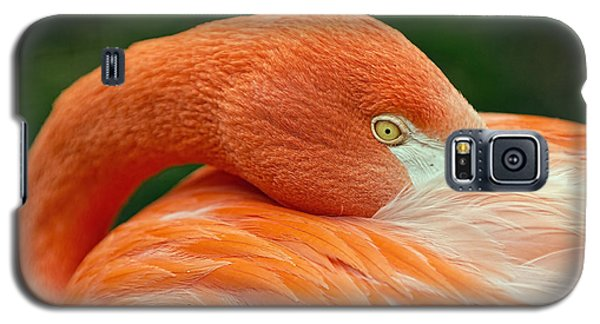 Galaxy S5 Case featuring the photograph Flamingo Closeup by RC Pics