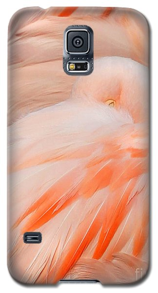 Galaxy S5 Case featuring the photograph Flamingo Eye by Clare VanderVeen