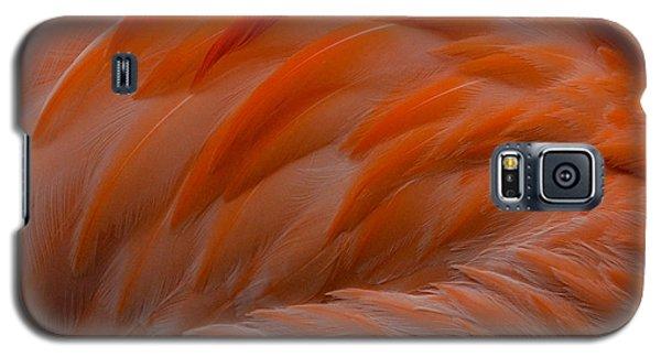 Flamingo Feathers Galaxy S5 Case