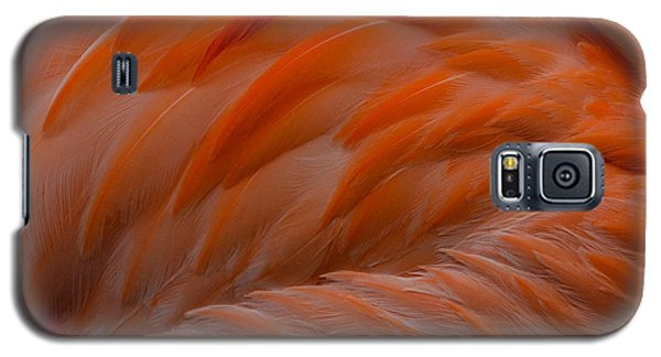 Flamingo Feathers Galaxy S5 Case