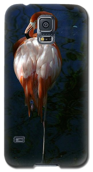 Galaxy S5 Case featuring the photograph Flamingo In The Shadows by Myrna Bradshaw