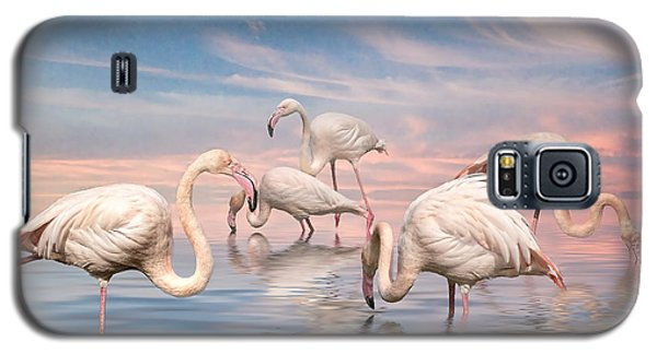 Galaxy S5 Case featuring the photograph Flamingo Lagoon by Brian Tarr