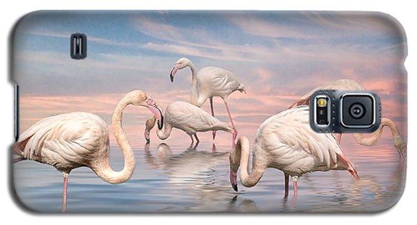 Flamingo Lagoon Galaxy S5 Case by Brian Tarr
