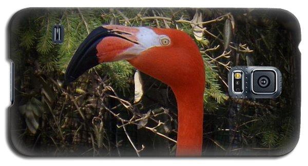 Flamingo Profile Galaxy S5 Case by Sara  Raber