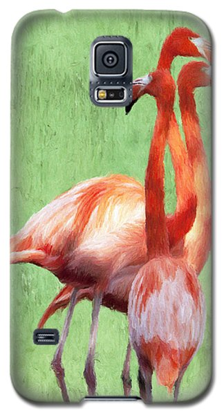 Flamingo Twist Galaxy S5 Case