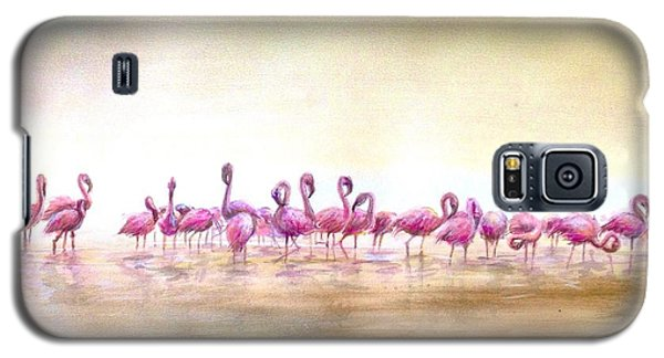 Flamingoes Land Galaxy S5 Case