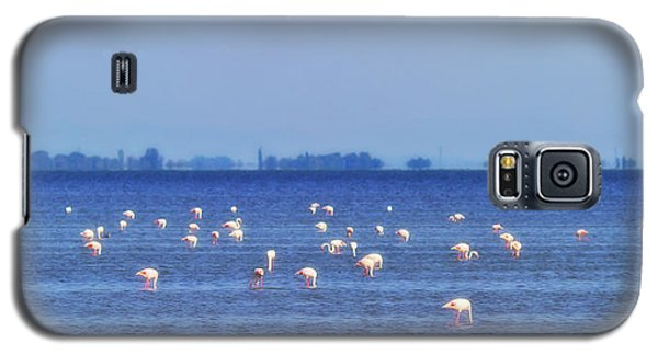 Flamingos In The Pond Galaxy S5 Case