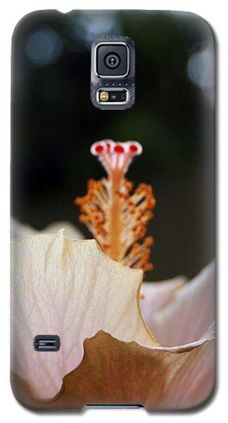 Flare 22 Galaxy S5 Case