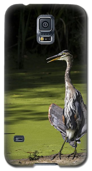 Flasher Pose Galaxy S5 Case