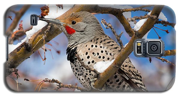 Flicker In Snow Galaxy S5 Case