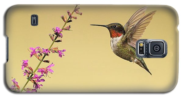 Galaxy S5 Case featuring the photograph Flight Of A Hummingbird by Daniel Behm